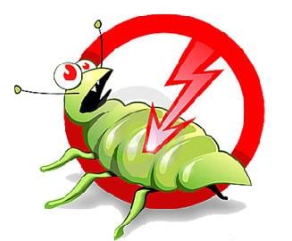 شركة-مكافحة-حشرات-بجدة