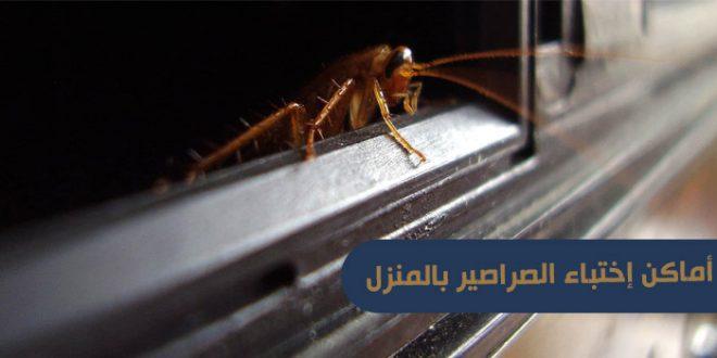 أماكن إختباء الصراصير بالمنزل
