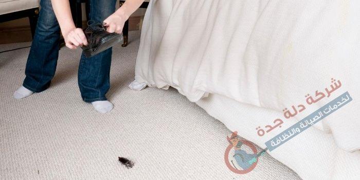 كيفية تنظيف المراتب من الحشرات